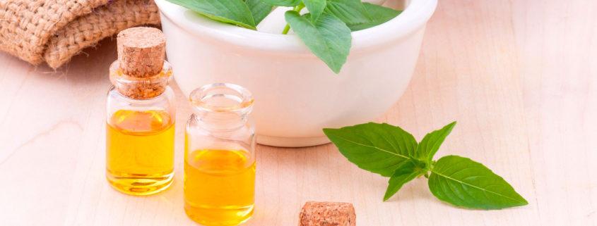Cómo usar el aceite de camelia